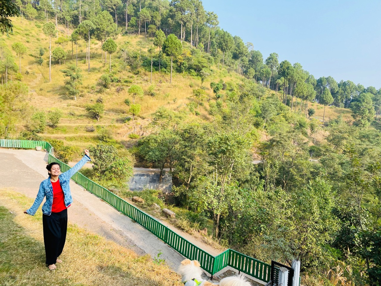 Roadtrip from Bangalore to Manali – a longstaycation